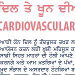 iCON (interCultural Online Network) Punjabi Health Forum on Cardiovascular Health